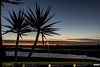 Palm Trees at Sundown (andrewtijou) Tags: andrewtijou nikond7200 europe spain puntadelmoral costadelaluz port sunset harbour water boats palmtrees es