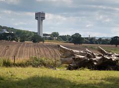 Daresbury laboratory tower 01 aug 16 (Shaun the grime lover) Tags: cheshire daresbury halton laboratory warrington summer tower science tree trunk field
