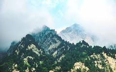 mountains (l_napishvili) Tags: mountain fog mist trees forest wood nature landscape