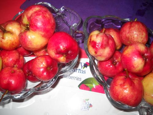 Zaarour Mayhow Berry Fruits Aug 7, 2016 (16)