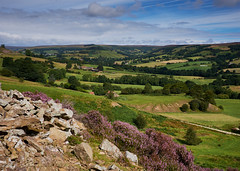Rosedale from Hollins (Hector Patrick) Tags: northyorkshire northyorkmoors flickrelite hollinsmines rosedale mininghistory fujifilmxpro2 fujinonxf18135lmoiswr heather britnatparks twop