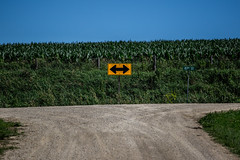 Two Ways About It (Phil Roeder) Tags: jacksoncounty iowa canon6d canonef70200mmf4lusm farm rural agriculture gravelroad sign