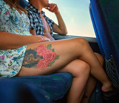 Three  Red Roses (Jomak1) Tags: jomak1 2016 september leg upper thigh woman lady man male female tan bronzed exposed bodyart tattoo red rose roses deer sitting seated public transport commuter passenger summery warm bus seat art skin fibonacci ratio