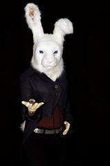 nur noch zwei Wochen bis Ostern (Christian Jena) Tags: white anime rabbit bunny cosplay manga wonderland buchmesse lbm leipziger akice