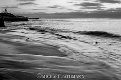 Relaxing Waters (michael.pathmann) Tags: ocean water 35mm relax la nikon san dof body diego scene surfing surfers f22 jolla greyscale d300 d300s