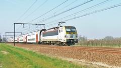 HLE 1803 & M6 @ Nieuwkerken-Waas (Tren di Belgica) Tags: belgium belgi siemens alstom m6 flanders bombardier sintniklaas nmbs sncb l59 hle18 nieuwkerkenwaas