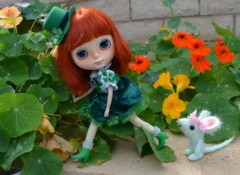 Looking for 4 Leaf Clovers