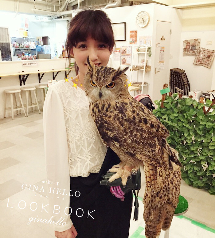 2015 大板貓頭鷹咖啡