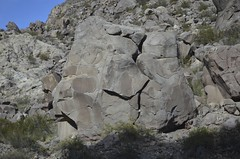 DSC_0119 (euclidezxxi) Tags: bear stones mendoza osos