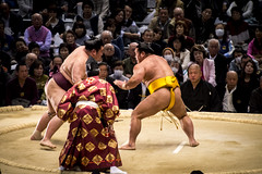 Sumo in Osaka-31 (Rodrigo Ramirez Photography) Tags: japan amazing traditional professional tournament osaka sumo yokozuna ozeki makuuchi hakuho sumotori sumotournament maegashira reikishi harumafuji topdivision