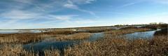 Laguna de la Nava (Francisco J. Gmez) Tags: laguna palencia lagunadelanava fuentesdenava