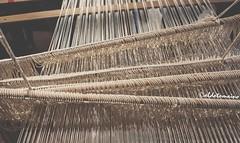(Aldo Tomaino_01) Tags: antico calabria fili secondo tradizioni telaio