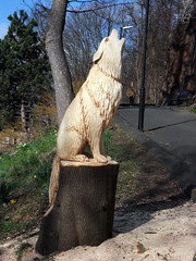 backwalk (2) (lairig4) Tags: wood scotland back wolf walk stirling carvings