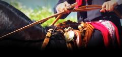 El oscuro y mi recao (Eduardo Amorim) Tags: horses horse southamerica argentina criollo caballo cheval caballos cavalos pferde cavalli cavallo cavalo gauchos pferd ayacucho apero chevaux gaucho cavall 馬 américadosul platería gaúcho amériquedusud provinciadebuenosaires лошадь recado gaúchos 马 sudamérica suramérica américadelsur südamerika crioulo caballoscriollos criollos حصان pilchas buenosairesprovince pilchasgauchas recao americadelsud plateríacriolla crioulos cavalocrioulo americameridionale caballocriollo eduardoamorim cavaloscrioulos