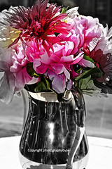 Silver Bouquet (Photographybyjw) Tags: flowers sun flower window set silver table nice day shine north some sunny carolina bouquet arrangement photographybyjw