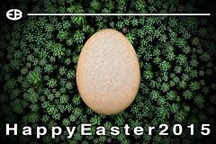 ... EASTER2015 (*melkor*) Tags: macro art nature colors field grass easter 50mm colours egg experiment minimal conceptual melkor freepostcard trashbit realegg easter2015