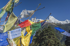 Nepal needs your help (bingleyman2) Tags: blue nepal sky mountain snow prayer flags colourful annapurna himalayas