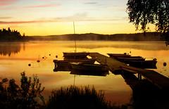 When pink changes to gold (BirgittaSjostedt) Tags: morning bridge sunset summer sky lake texture water beauty fog night clouds sunrise boat haze sweden calm fairy stillness calmness sailingboat magicunicornverybest