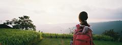 home.bali (ceh_a) Tags: fujifilmtx1 45mmf40 superiaxtra400 bali purilumbung munduk sunset