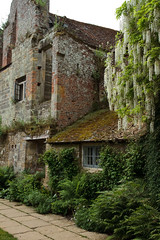 A Castle for a Home 3627 (Thorbard) Tags: englanduk kent nationaltrust scotneycastle wisteria garden castle history historic statelyhome countryhouse canonefs1585mmf3556isusm plants green flowers summer summer2016 stone