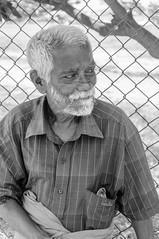 Wise Old Face (dibblington) Tags: srilanka beggar old wrinkles beard
