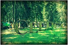 Celtica 2016 (Valiena) Tags: wood mountain green val courmayeur montagna bosco valdaosta 2016 veny celtica celtico