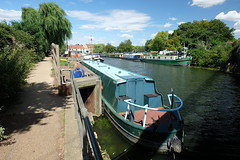 River Great Ouse at Ely, Cambridgeshire (John D McDonald) Tags: ouse greatouse riverouse rivergreatouse river water boat boats tree trees willow willows willowtree willowtrees ely cambridgeshire cambs fens fenland fenlands eastanglia summer august sunny cloud clouds blue bluesky