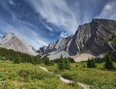 Chester Lake - meadow (dhugal watson) Tags: canada alberta kananaskis chester lake fuji xt1 1024 mountain summer