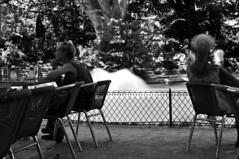 (omarpappi) Tags: street streetphotography streetbw people photography blackwhite blancoynegro biancoenero bw blackandwhite mono monochrome monocrome monocromo bar acqua vacanza francia france avignone