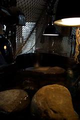 IMG_1508.CR2 (jalexartis) Tags: bask basking baskingstone baskingrock aquatic aquatichabitat aquarium abovetanknetting turtlesecurity fallsafe lighting perspective jalexartis