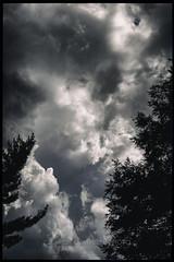 Sky Drama, 2016.07.29 (Aaron Glenn Campbell) Tags: lehman backmountain luzernecounty nepa pennsylvania sky clouds dramatic moody atmospheric outdoors rural country sony a6000 ilce6000 sonyalpha6000 mirrorless nikon micronikkorauto55mmf35 fotodiox lensadapter primelens manualfocus vintage
