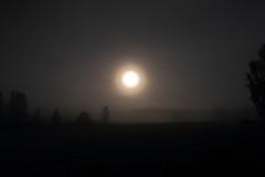 Moon and fog_2016_08_25_0005 (FarmerJohnn) Tags: kuu kuutamo moon moonlight elokuu august latesummermoon night y tyyni calm fog sumu usva haze mooninfog kuujasumu syyskes latesummer hiljaisuus silence anttospohja valkola laukaa suomi finland canon canon7d ef1635l28iiusm juhanianttonen