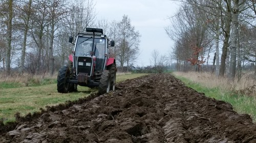 Ploughing in the ley, Wakelyns Agroforestry, UK