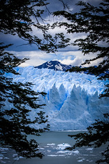Perito Moreno Terminus (robertdownie) Tags: sky mountains water travel blue clouds snow mountain ice glacier america andes patagonia south argentina moreno perito santa cruz los calafate el glaciares