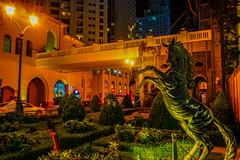 Dubai Marina (mr_nkstyle) Tags: dubai marina uae travel spiaggia mare emirati night
