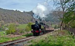 western spring (midcheshireman) Tags: steam train locomotive llangollen greatwestern 64xx wales