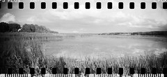2016-08 - 069SR - DSC_9989 (sarajoelsson) Tags: sprocketrocket blackandwhite bw panorama panoramic sprocketholes digitizedwithdslr toycamera ilford sweden 135 35mm 2016 hp5 monochrome plasticlens everydaylife filmphotography filmisnotdead believeinfilm filmshooter film wideangle biskopsarn hc110 lomography lomo summer august