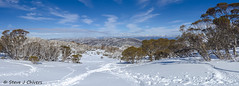 Dead Horse Gap trail panorama merge, the Snowy Mountains NSW. (Steve J Chivers) Tags: snowy mountains snowymountains nsw snow deadhorsegap hiking nature winter white panorama photomerge