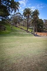 Royal Botanic Gardens (:: Blende 22 ::) Tags: downtown sydney australia newsouthwales australien botanicgarden royalbotanicgardens mrsmacquarieschair ef24105mmf4lisusm canoneos5dmarkii