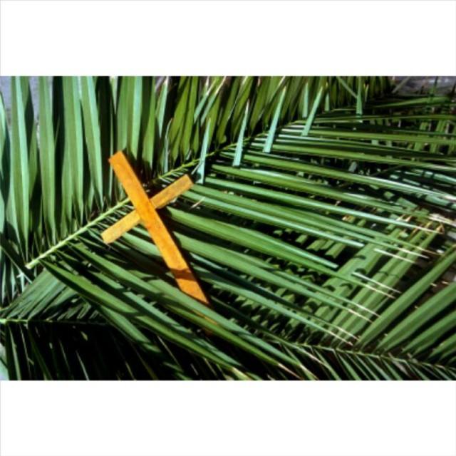 Blessed PALM SUNDAY everyone! #HolyWeek