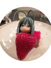 Strawberry Pinky4 (annesstuff) Tags: fruit dessert toy japanese strawberry cheesecake pinkyst japanesetoy annesstuff