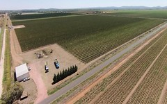 Farm 258 Savage Road, Yoogali NSW
