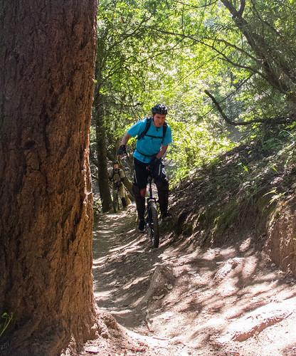 Climbing Alchemist Trail