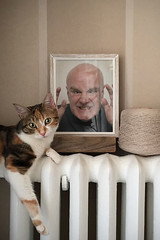 kitty and frame