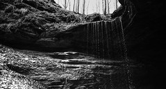 let it rain (middleton_nick) Tags: trees sky blackandwhite bw cold water leaves rock stone forest waterfall woods shadows kentucky ky country dirt cave grayscale damp mammothcavenationalpark mcca maca nikond610