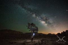 Midnight Explorer Under The Joshua Tree (Mike Ver Sprill - Milky Way Mike) Tags: joshua tree milky way panorama pano mike michael ver sprill versprill mv galaxy cali california nikon d800 1424 landscape nightscape nightscapers night sky earth amazing trees mountains gorgeous star stars space cosmos light polution travel explore best photography every greatest trails camping camp peter lik style large format printing 29 palms hidden valley gary fong sphere strobist strobe long exposure le high iso outdoor air glow midnight explorer under astrophotography astronomy
