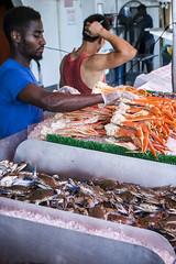 The Wharf - Washington DC (Reg|Photography4Lyfe) Tags: photography dslr dslristd portrait portraiture man wharf washingtondc seafood selling sales food people men working work