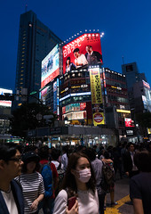 Shibuya crossing at night, Kanto region, Tokyo, Japan (Eric Lafforgue) Tags: road street city light people urban japan vertical night buildings advertising outdoors photography japanese tokyo asia crossing exterior crowd shibuya citylife pedestrian illuminated billboard advertisement busy nighttime pedestrians billboards metropolis nightview popular adults advertisements groupofpeople crowded advertise urbanscene kantoregion advertisingsign colorimage buildingexterior urbanarea dogenzaka shibuyaku advertisingsigns 9people mixedagerange colourpicture japan161038