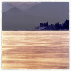 Lake Garda 000 (siggi.martin) Tags: italien trees houses italy house mountain lake mountains tree water berg glitter see wasser europa europe haus sparkle berge cedar bume baum sparkling cedars huser lombardy glitzern lombardei zeder glitzernd zedern