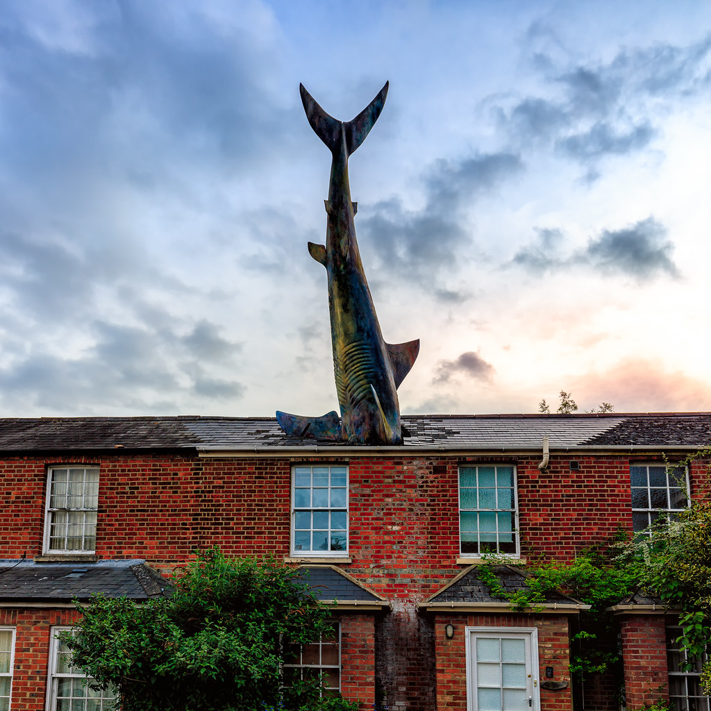 The World S Best Photos Of Roof And Shark Flickr Hive Mind